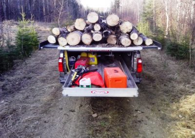 TRUCKBOSS Forestry Wildlife